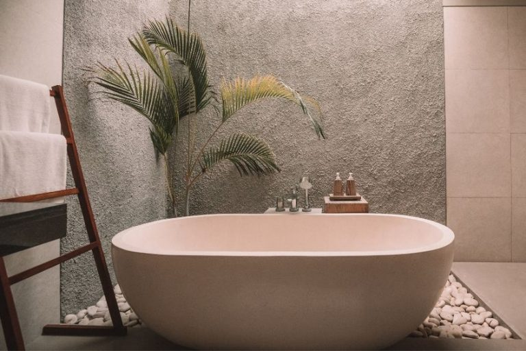 10 Best Bathroom Plants