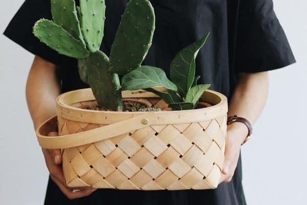 Basket planter pot