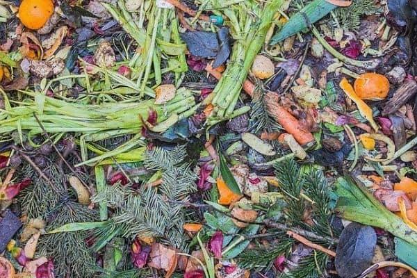 compost in a small garden