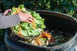 Small Garden Composting Ideas