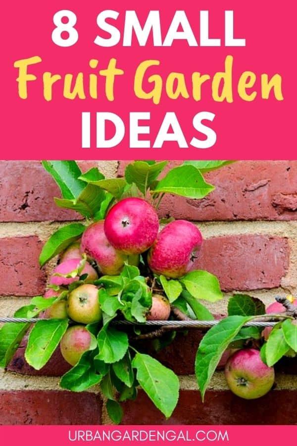 small fruit garden ideas