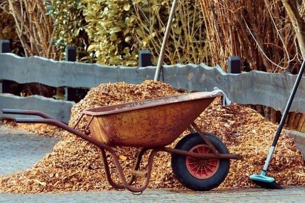winter garden mulch
