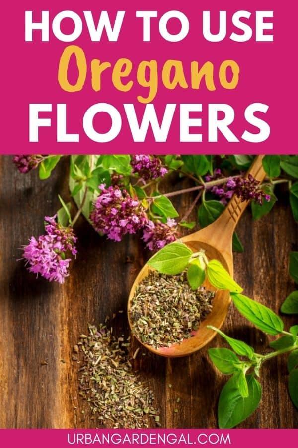using oregano flowers