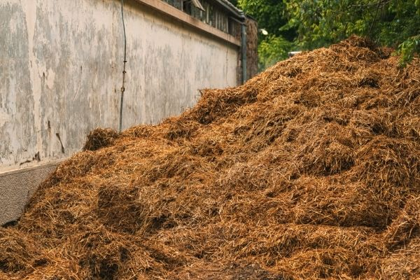 Read more about the article How To Use Horse Manure In Your Garden