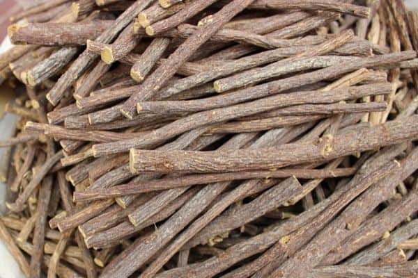Read more about the article How To Harvest and Dry Licorice Roots