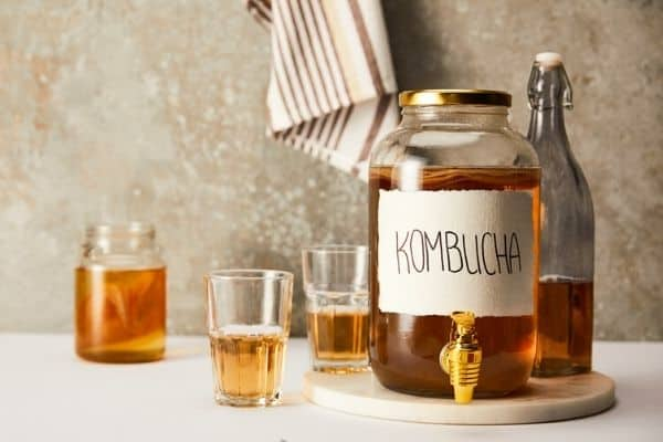 Read more about the article 7 Ways To Use Kombucha In The Garden