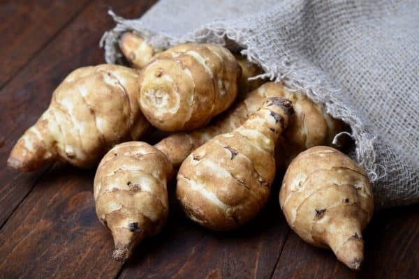 Read more about the article How To Harvest Jerusalem Artichokes